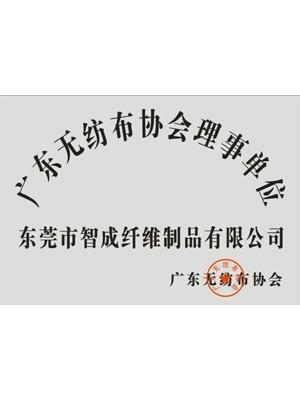 智成广东无纺布协会理事单位证书