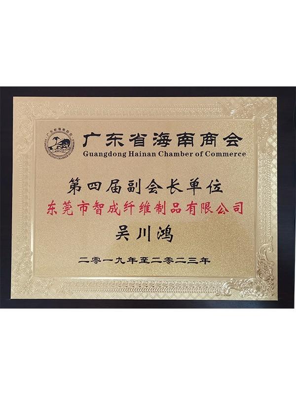 智成总经理广东省海南商会第四届副会长单位