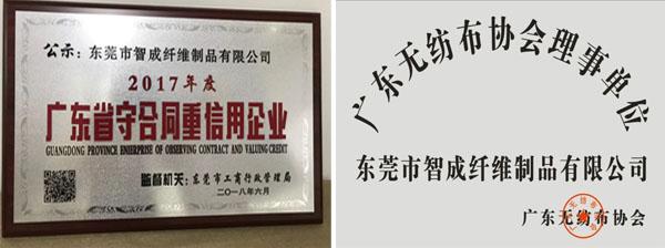 智成荣誉证书
