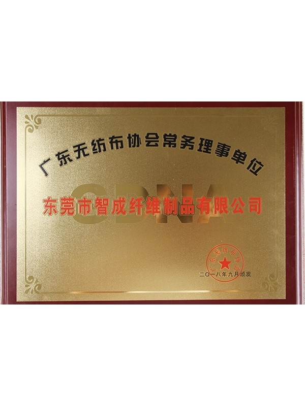 智成广东省无纺布协会常务理事单位