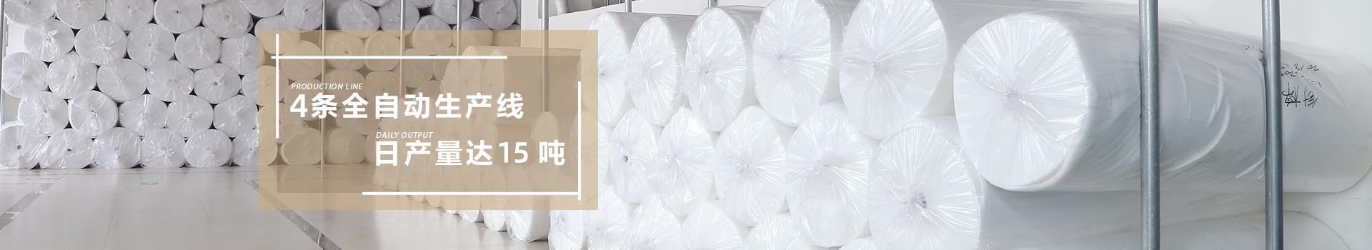 智成-4条全自动生产线,日产量达15吨